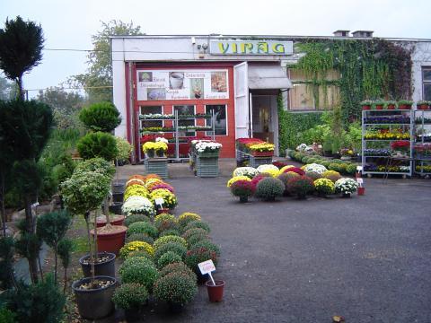 Florex 2002. Bt. telephelye