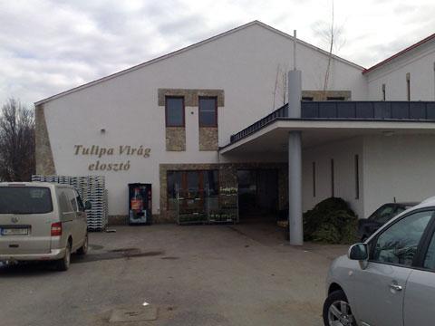 4400 Nyíregyháza, Bottyán u. 10.